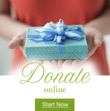 cta-donate-online